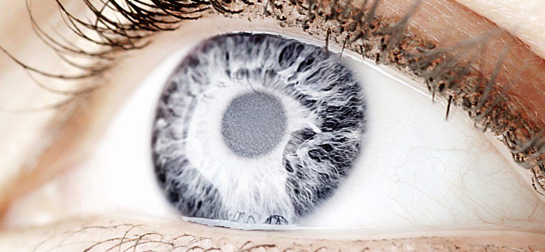 Multifocal Intraocular Lens Implants